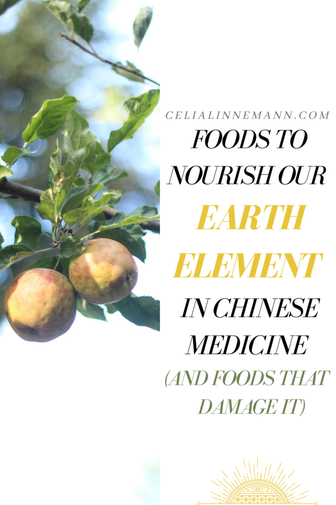 foods to nourish the earth element spleen and stomach