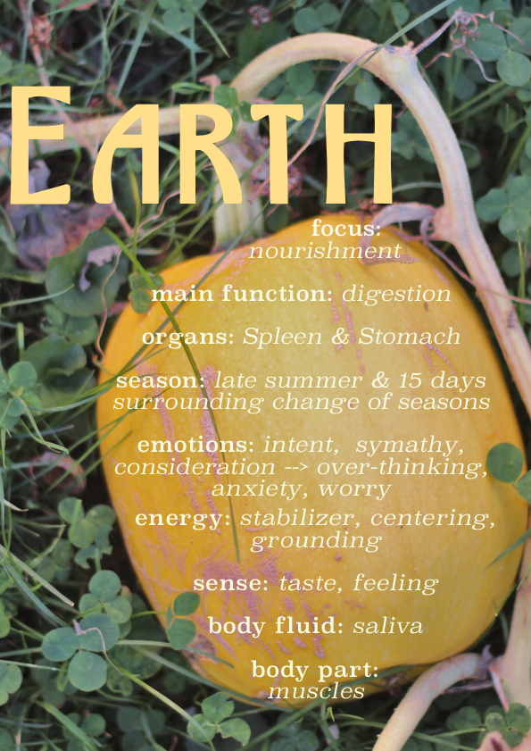 earth element infographic