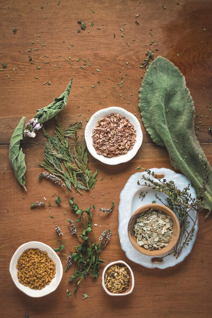 mullein eucalyptus thyme lung tea