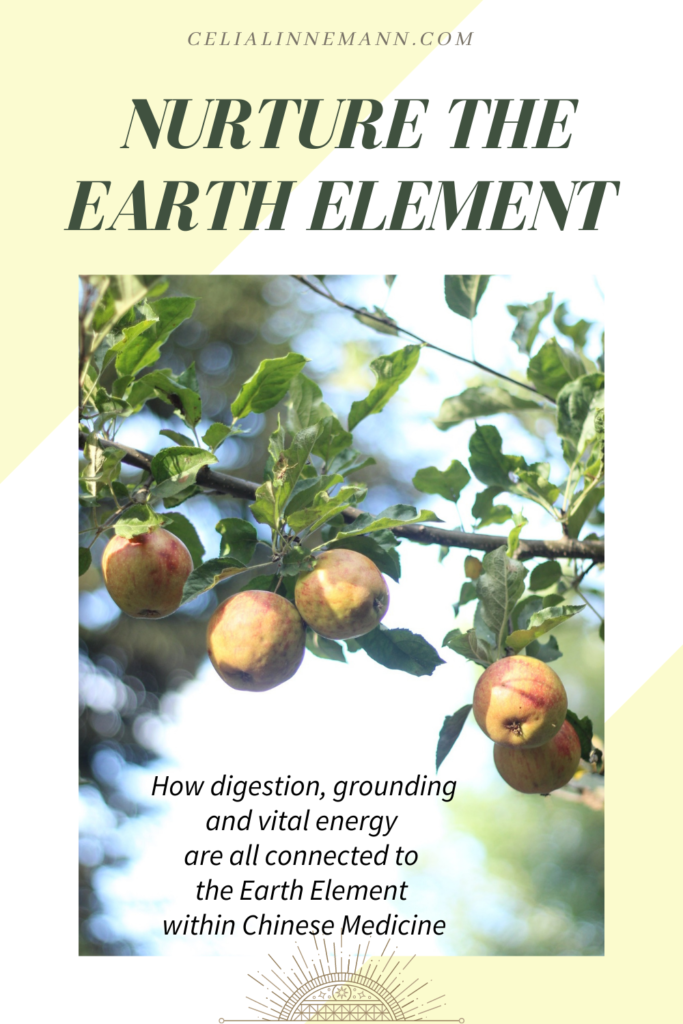 nurture the earth element stomach and spleen