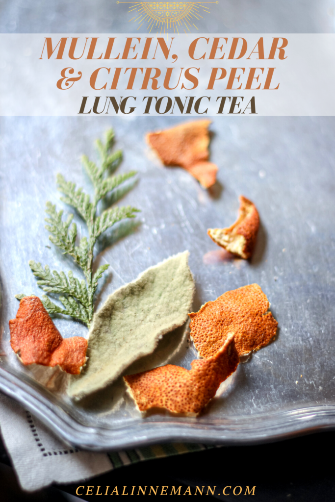 mullein cedar chen pi lung tonic tea