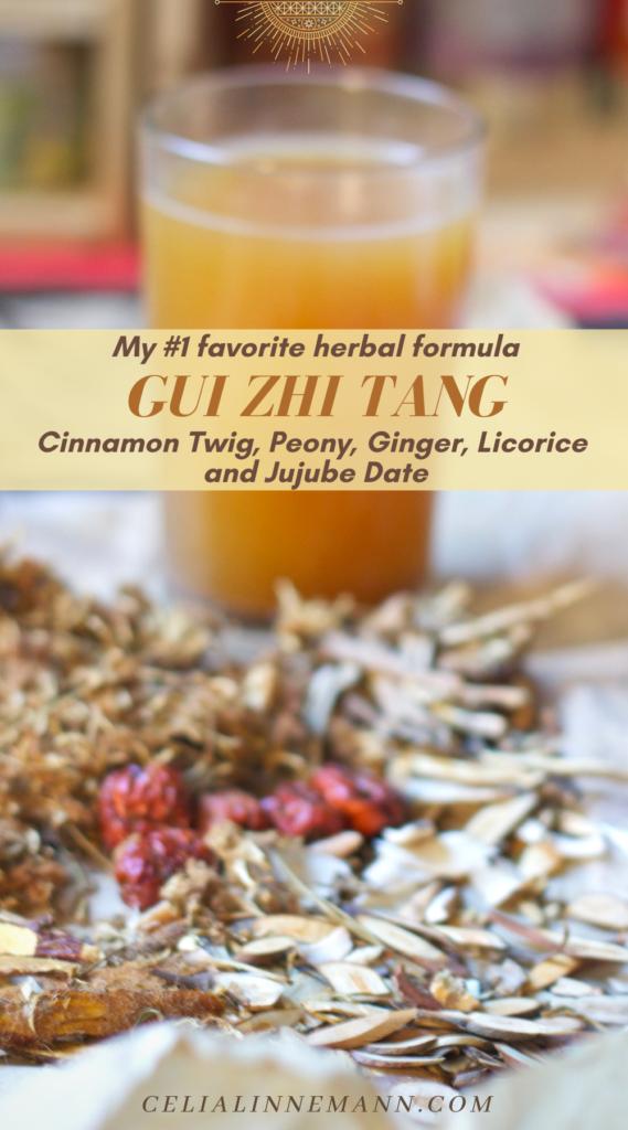 gui zhi tang herbal formula infographic