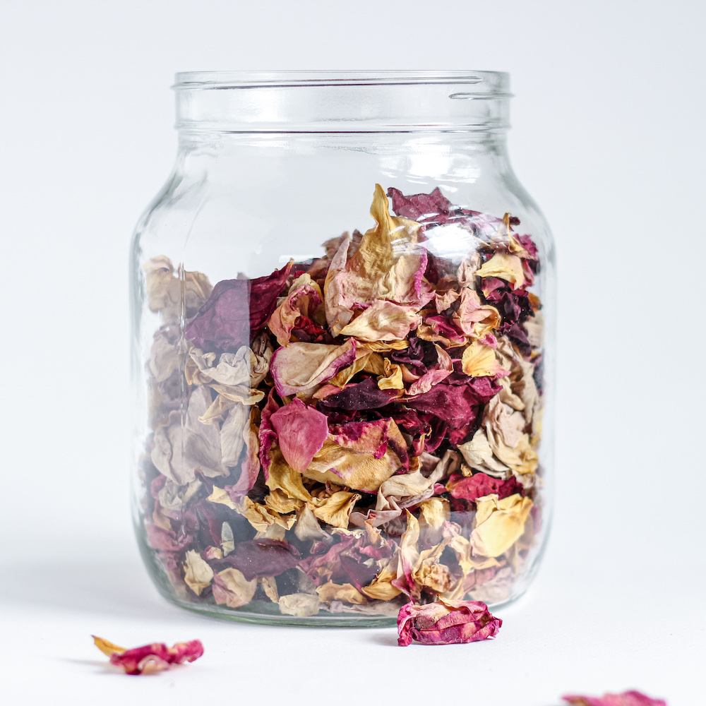 jar of red and yellow roses white background