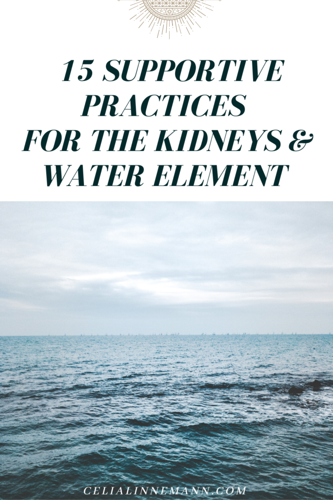 supportive practices for the kidneys water element