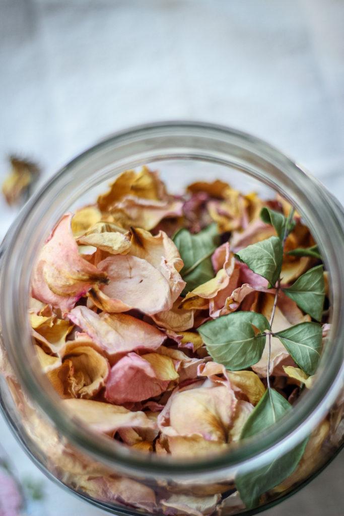 peach pink rose petals and rose leaf in glass jar