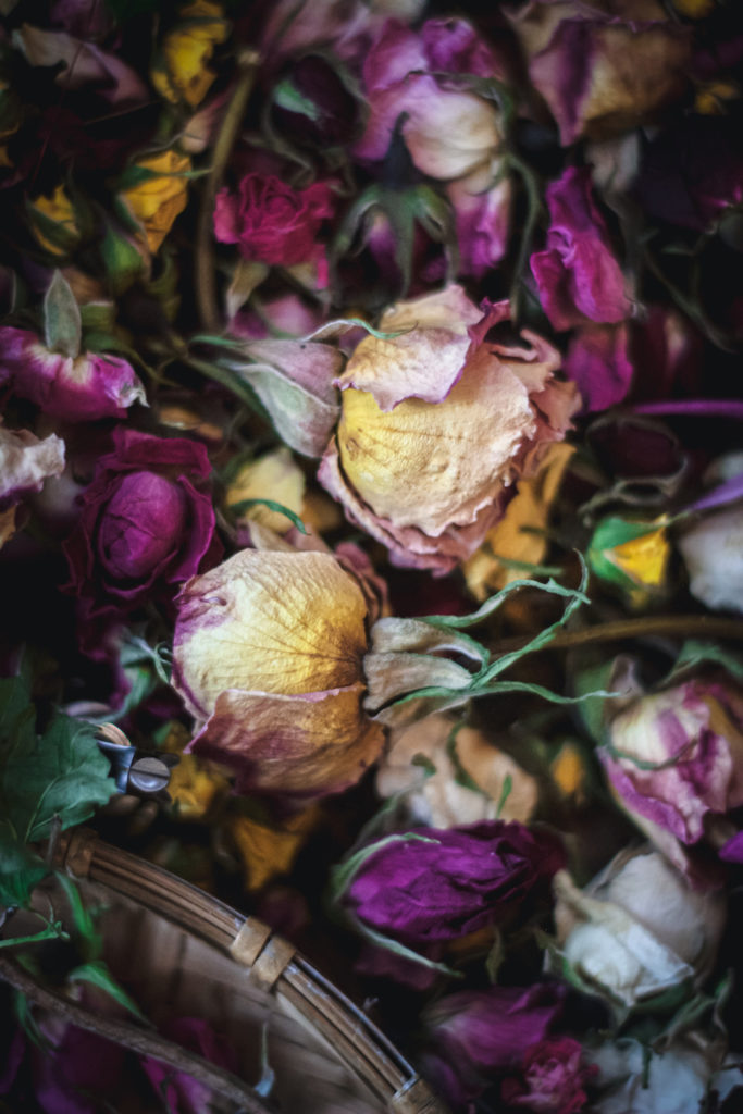 close up of dried roses