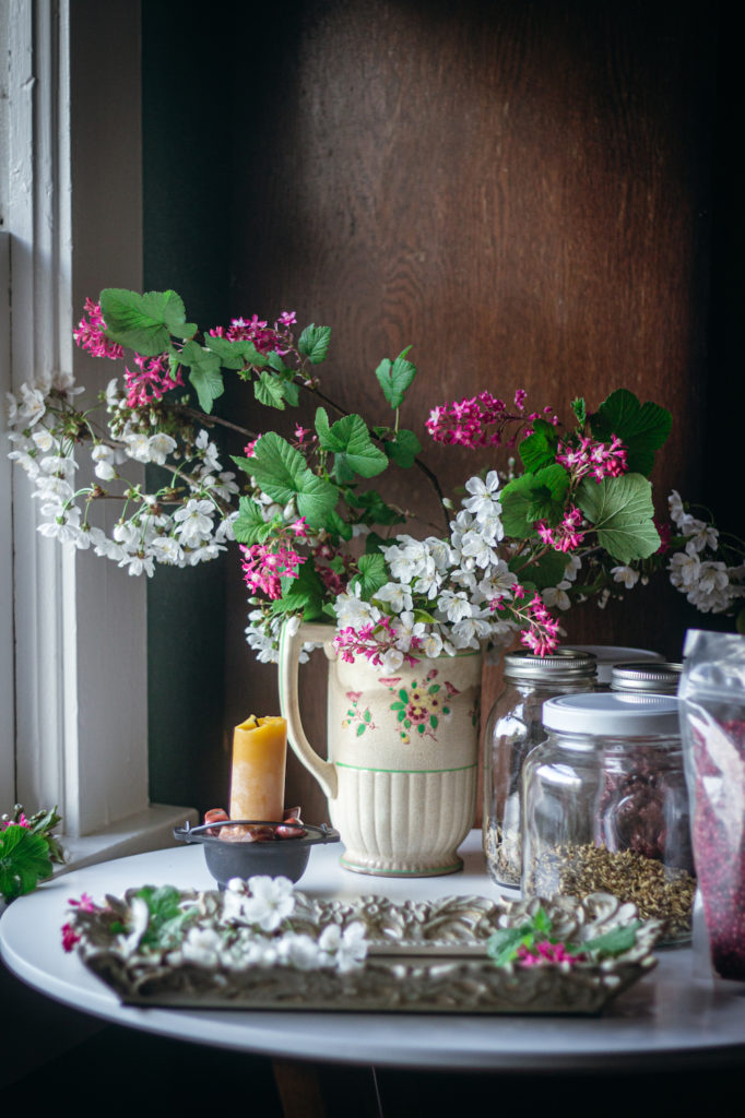 cherry blossoms and currants in pitcher on table