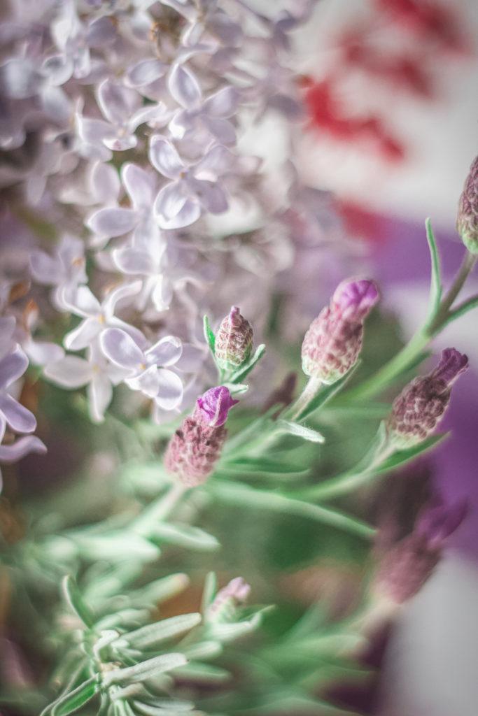 rabbit eared lavender lilac arrangement