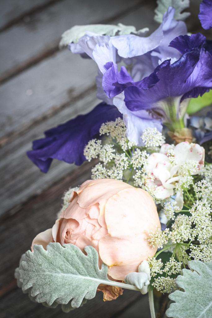 peach rose blue iris