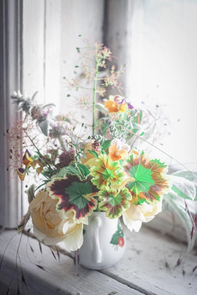 pansy geranium sill