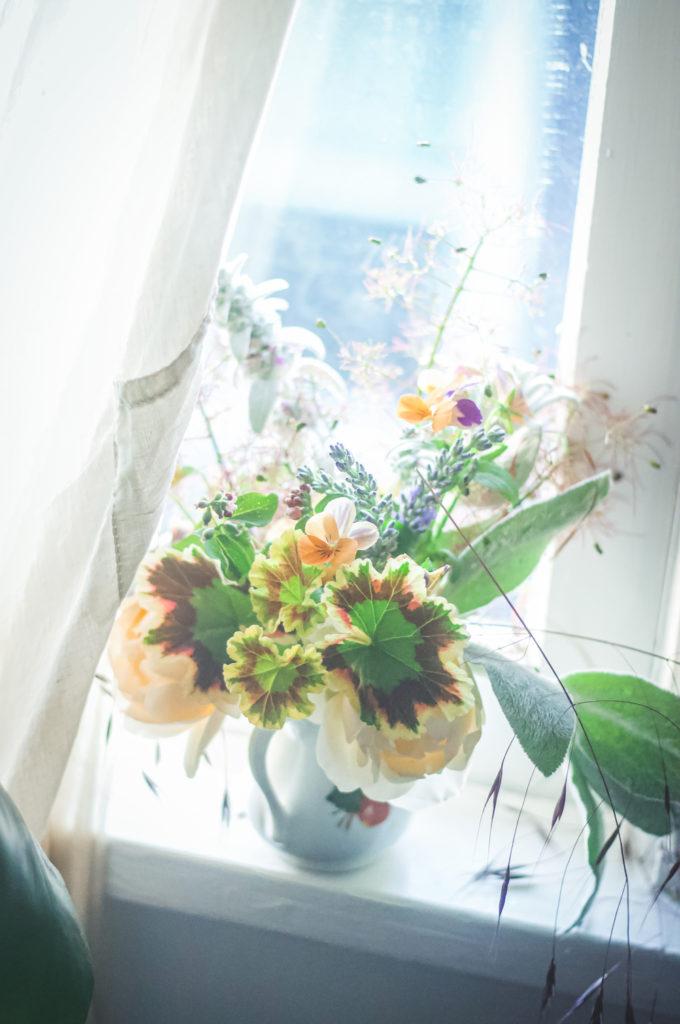 pansy geranium curtain