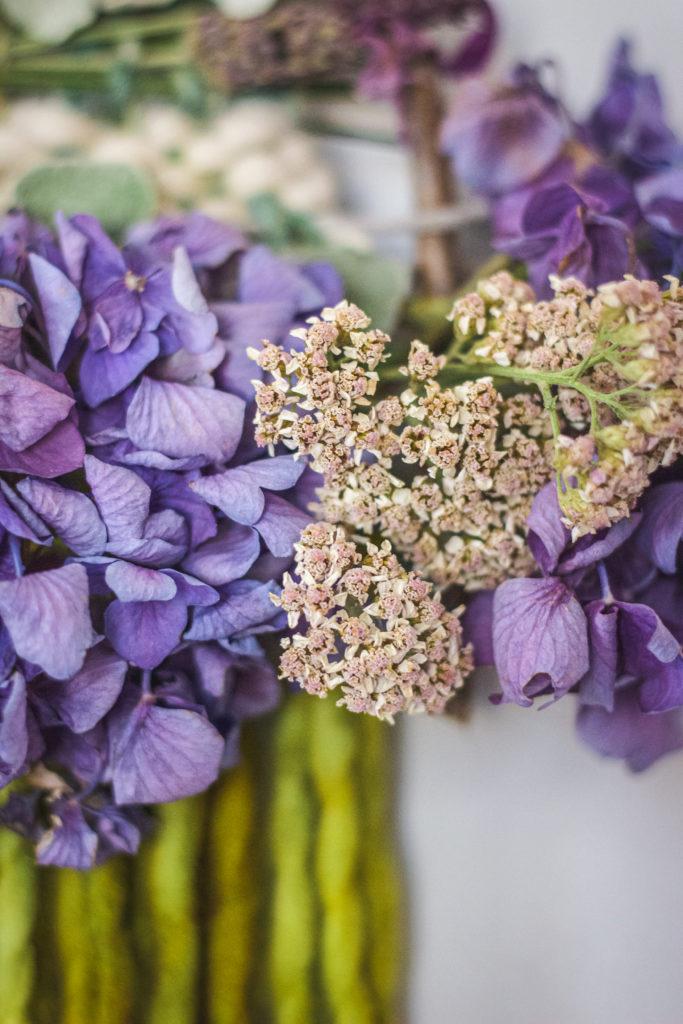 close up of pink yarrow purple hydrangea