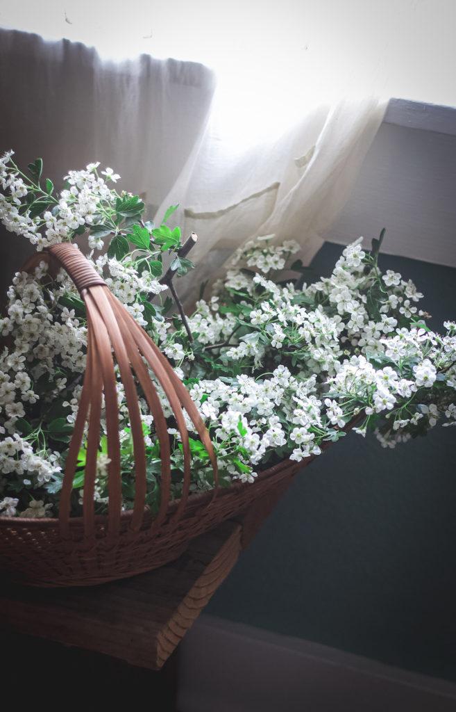 hawthorn flowers by window
